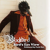 Bird's Eye View by Blackbird