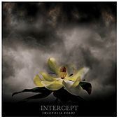Magnolia Road by Intercept
