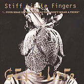 Your Head is Full of Ideas That Don't Mean a Thing by Stiff Little Fingers