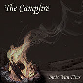The Campfire by The Birds