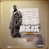 The Undeniable LP by Phat Kat