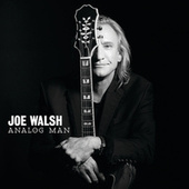 Analog Man by Joe Walsh