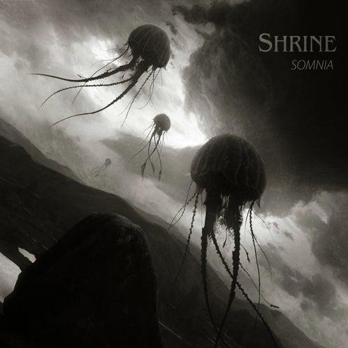 Somnia by Shrine