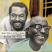 Blowing The Fuses by Sonny Terry