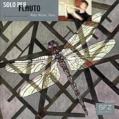 Solo per flauto by Various Artists