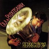 Herregud 37 by Ola