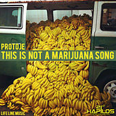 This Is Not a Marijuna Song by Protoje