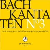 Bachkantaten N°3 (BWV 132, 35, 1) by Chor