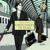 Crescendo in Duke by Benoit Delbecq
