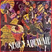 Play For Me by Segun Adewale