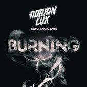 Burning von Adrian Lux