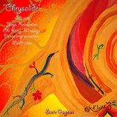 Chrysalide (Poésie Sonore/Sonic Poetry/Poesía Sonora) by Suzie Gagnon
