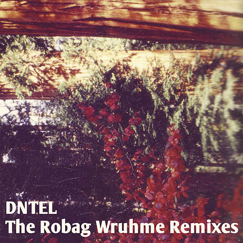 The Robag Wruhme Remixes by Dntel