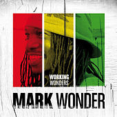 Working Wonders by Mark Wonder