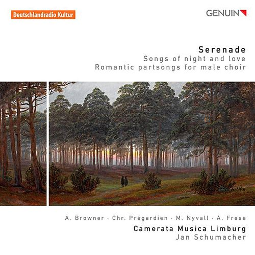 Serenade - Songs of Night and Love by Various Artists