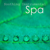 Soothing Instrumental Songs: Spa Music on Piano by Instrumental Music Songs