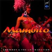 Mambito by Snowboy
