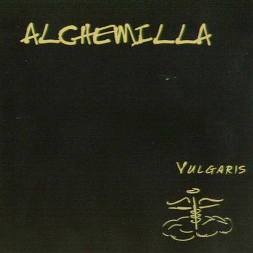 Vulgaris by Alchemilla