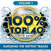 100% Top 40 Hits 2012, Vol. 1 by Audio Groove