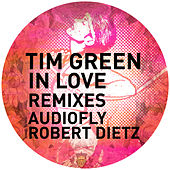 In Love The Remixes by Tim Green