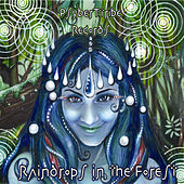 Raindrops in the Forest by Various Artists