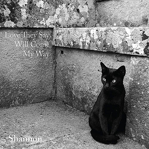 Love They Say (Will Come My Way) by Shannon