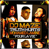 Pour la vie - Single by DJ Maze