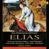 Mendelssohn: Elijah by Christine Wolff