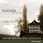 Wagner: En Suisse by Various Artists