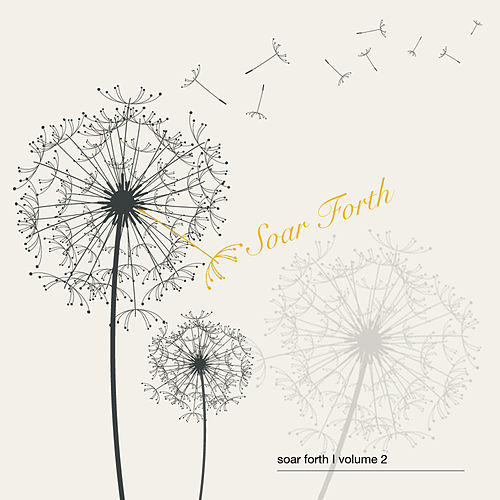Soar Forth Volume 2 by Various Artists