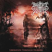 Liberation Through Hearing by Inanimate Existence