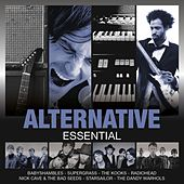 Essential: Alternative von Various Artists