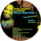 Where I Want To Be by Andy Compton