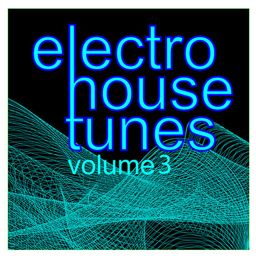 Electro House Tunes: Vol.03 by Various Artists