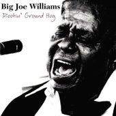 Rootin' Ground Hog by Big Joe Williams