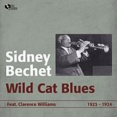 Wild Cat Blues (1923 - 1924) by Sidney Bechet