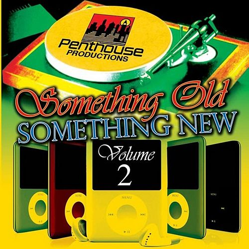 Something Old, Something New Vol. 2 by Various Artists