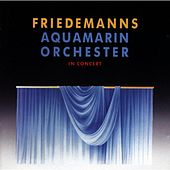 Aquamarin Orchester in Concert by Friedemann