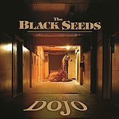 Into The Dojo by The Black Seeds