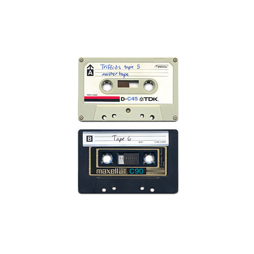 The Early Cassettes - Tapes 5 & 6 by Triffids