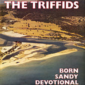 Born Sandy Devotional by Triffids