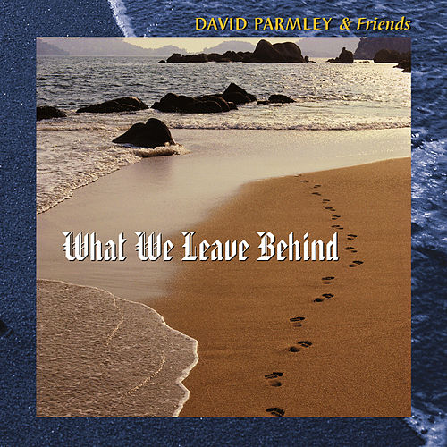 What We Leave Behind by David Parmley