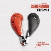 FDSMH (Für dich schlägt mein Herz) von Silbermond
