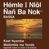 Bassa du Nouveau Testament (dramatisé) - Bassa Bible by The Bible