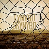Last Of A Dyin' Breed by Lynyrd Skynyrd