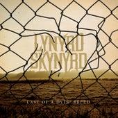 Last Of A Dyin' Breed by Lynyrd Skynyrd