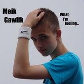 What I'm Feeling by Meik Gawlik