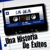Una Historia de Éxitos: Los Galos by Los Galos