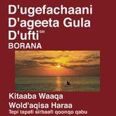 Borana New Testament (Dramatized) by The Bible