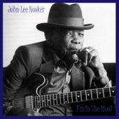 I'm in the Mood by John Lee Hooker